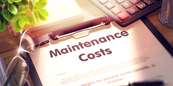 People and Processes Maintenance Costs_580920085